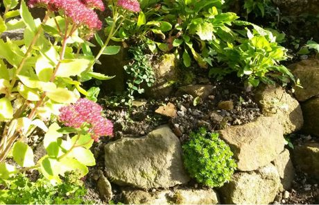 Hard Lanscaping - Rockeries