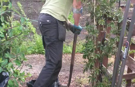 Hard Lanscaping