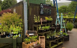 National Trust Spring Plant Fair