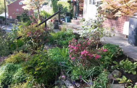 Garden Maintenance Project img 2