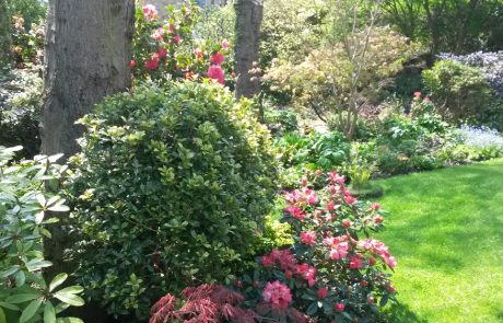 Garden Management - By Tender Graft 4