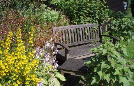 Garden Management - Borders 9