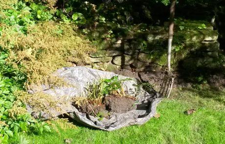 Garden Management - Borders 14