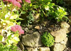 Creating a rockery at Woolynit 7