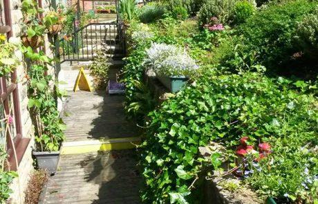 Tender Graft Soft Landscaping Services